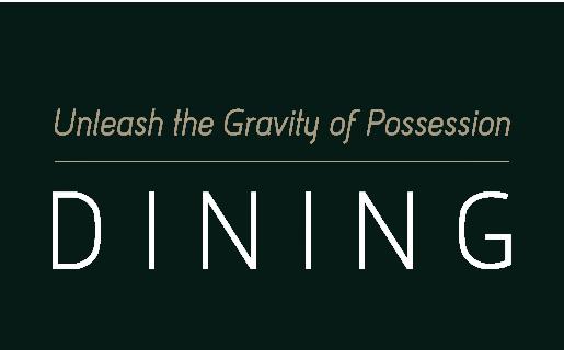 Unleash the Gravity of Possession 牵动你的消费体验 国金品味