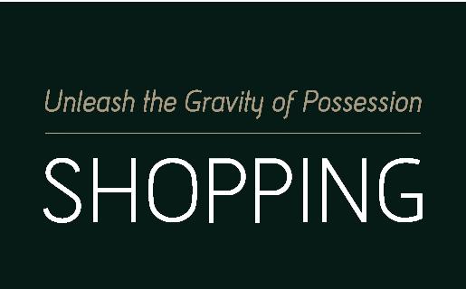 Unleash the Gravity of Possession 牵动你的消费体验 品牌导购